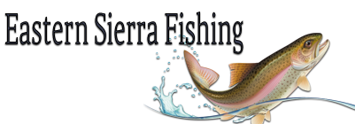 Eastern Sierra Fishing